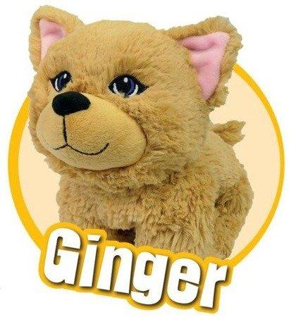 Snuggiez Maskotka Kotek Ginger pluszak na rękę